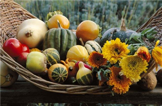 Осенний декор для вашего дома